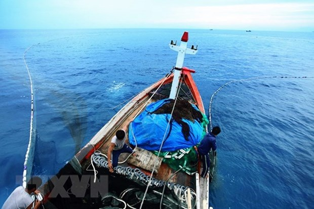 Quang Binh recovers after marine pollution hinh anh 1