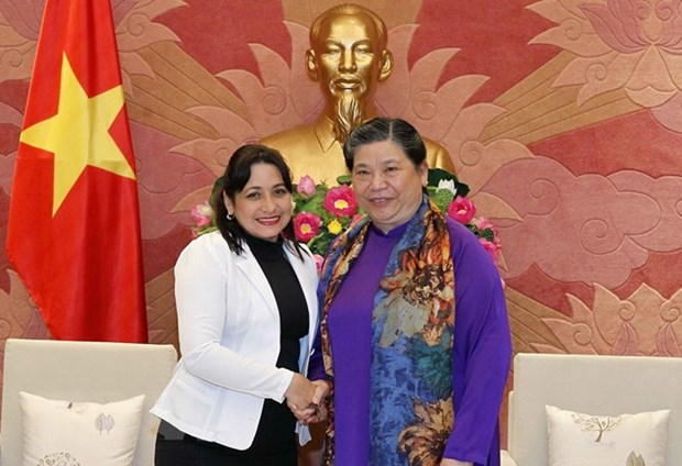 Cuba learns about Vietnam's youth education hinh anh 1