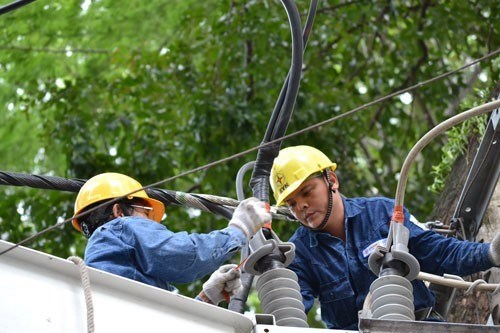 EVN ensures stable electricity supply for southern hub hinh anh 1