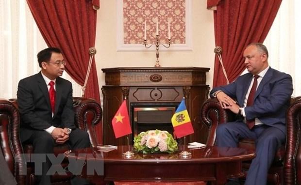 Ambassador wishes for growing Vietnam – Moldova ties hinh anh 1