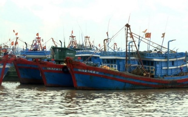 Vietnam, China negotiate cooperation in less sensitive marine areas hinh anh 1