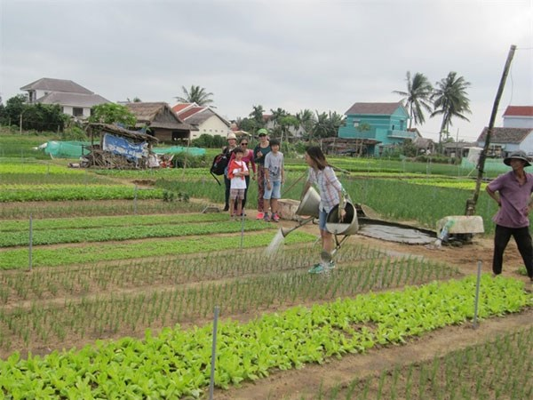 Positive policy making needed for agri-tourism booming hinh anh 1