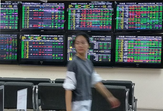 VN-Index nosedives to under 1,000 points in gloomy atmosphere hinh anh 1