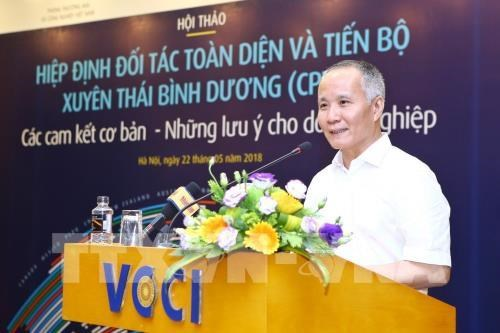 Conference highlights CPTPP's commitments, tips for businesses hinh anh 1