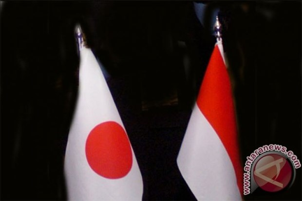 Indonesia, Japan agree to increase aid for Palestinians hinh anh 1