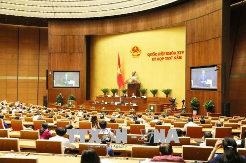 Amendments of denunciation, competition law discussed hinh anh 1