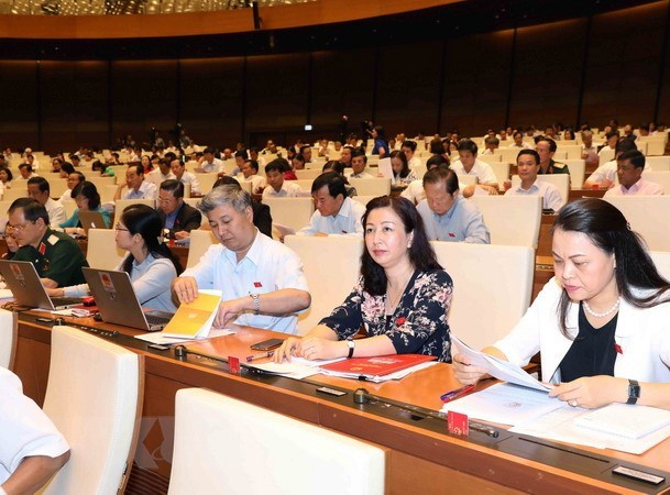 Lawmakers emphasises need for measures to protect denunciators hinh anh 1