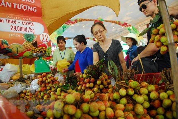 Southern fruit festival to take place in June hinh anh 1