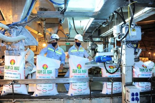 PVCFC's output hits 5 mln tonnes of urea after 7 years of operation hinh anh 1