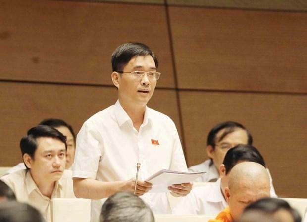Legislators depict recent economic growth as impressive hinh anh 1