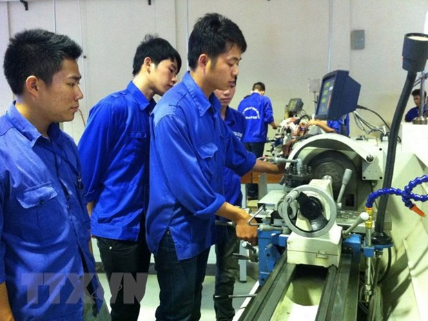 Ca Mau eyes to take 1,000 labourers abroad hinh anh 1