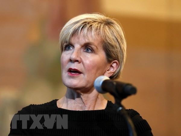 Australian Minister to visit Vietnam hinh anh 1