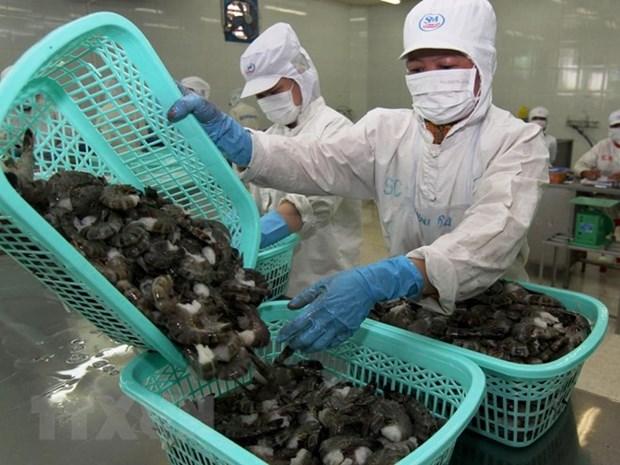 Vietnam dominates Canada's shrimp market hinh anh 1
