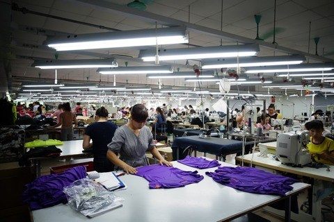 New rules on processing goods for foreign traders hinh anh 1