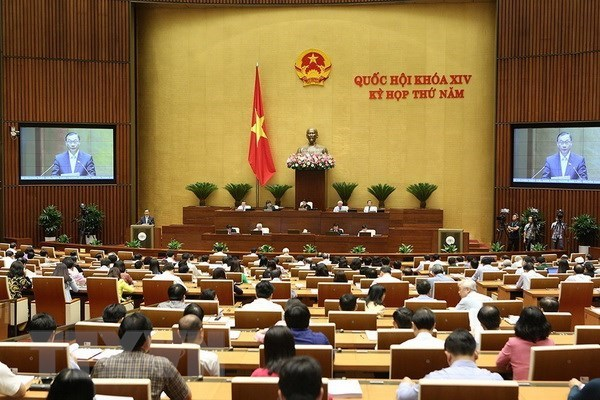 NA session: SOEs' efficiency not match resources hinh anh 1