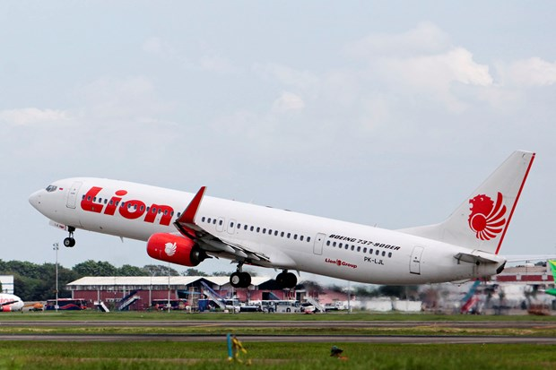 Indonesia: 10 passengers injured after false bomb claim on plane hinh anh 1