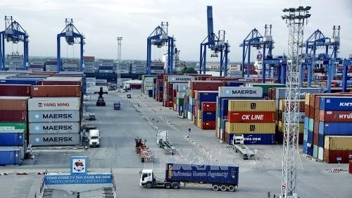 Abandoned imports pile up at HCM City's ports hinh anh 1