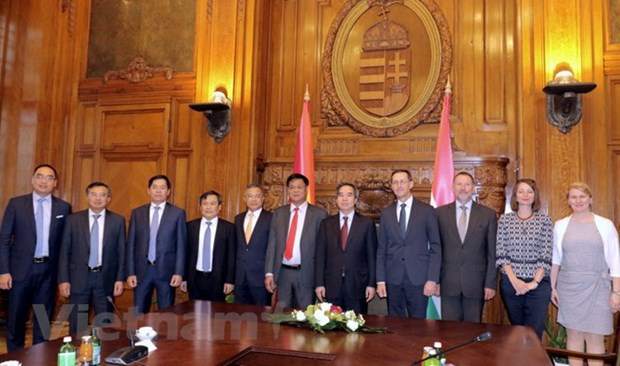 Vietnam wishes to bolster investment cooperation with Hungary hinh anh 1