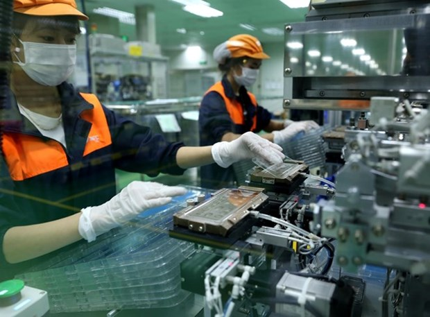 More than 11,000 new firms established in May hinh anh 1