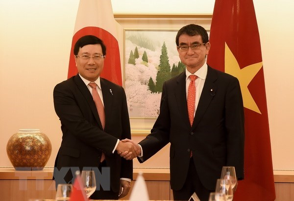 Vietnamese, Japanese FMs delighted at bilateral ties hinh anh 1
