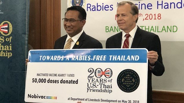 Thailand receives rabies vaccines from US hinh anh 1