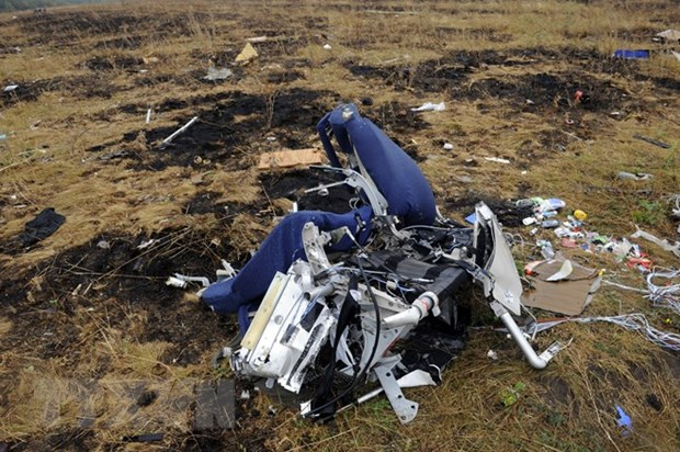 Malaysia: No conclusive evidence against Russia in MH17 downing hinh anh 1