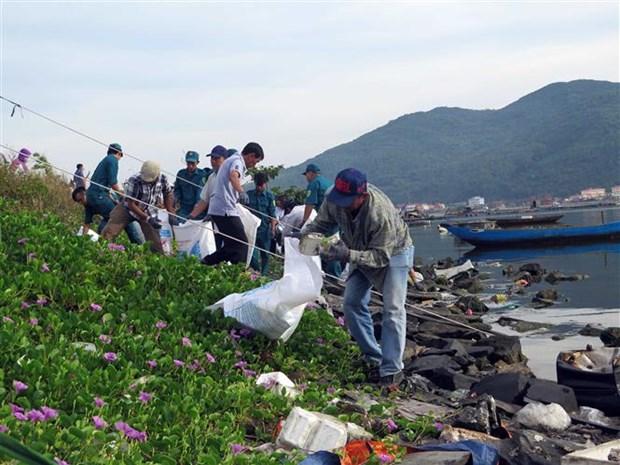Da Nang marks World Ocean Day hinh anh 1