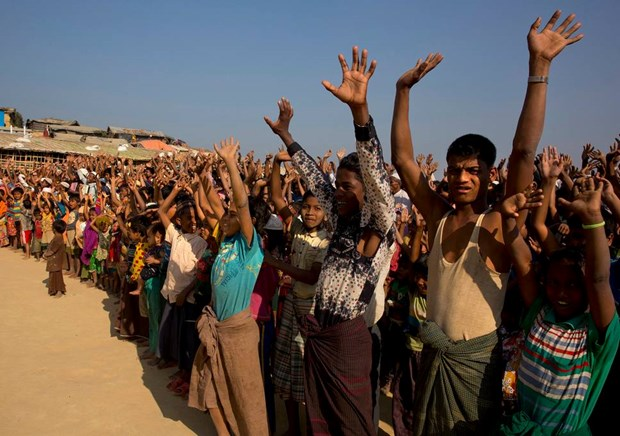 Myanmar willing to take back all Rohingya refugees hinh anh 1