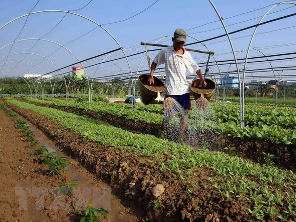 Vietnam sees potential for organic fertilizer business hinh anh 1