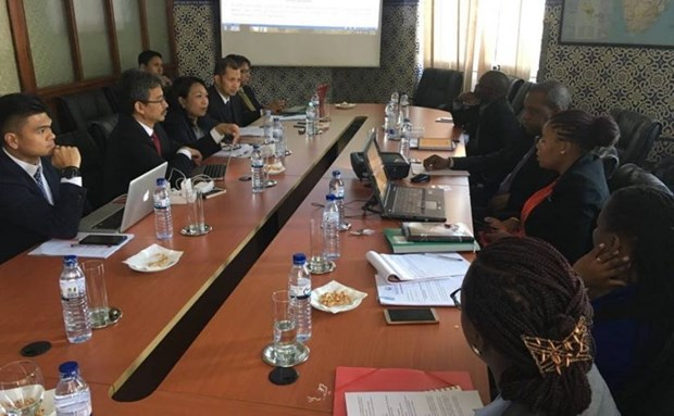 Indonesia, Mozambique commence talks on preferential trade hinh anh 1