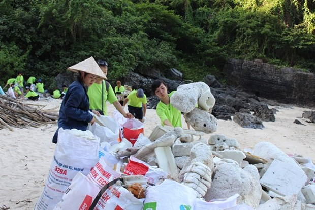 Artwork campaign aims to raise awareness of marine plastic pollution hinh anh 1