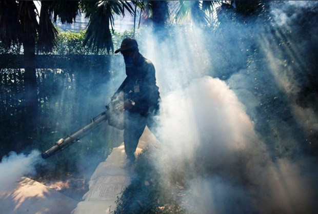 Thailand's northeast faces risk of dengue fever outbreaks hinh anh 1