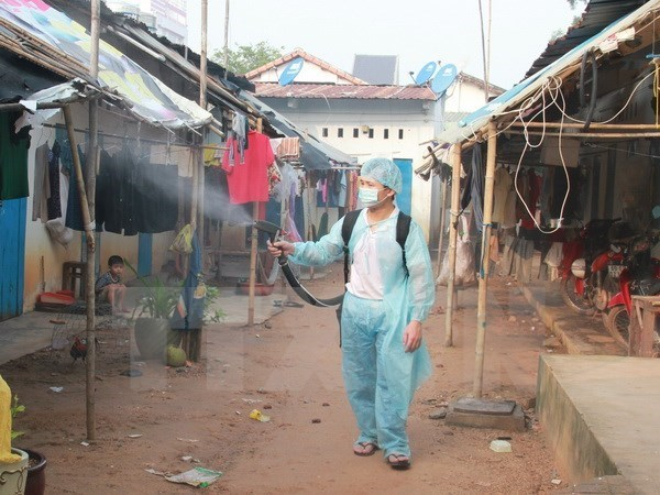 Dengue outbreak risks remain despite fall in new cases hinh anh 1