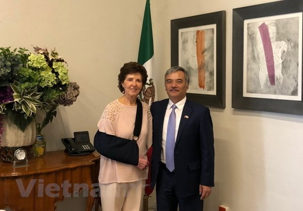 Cultural exchange bonds Vietnam, Mexico: Mexican Minister hinh anh 1