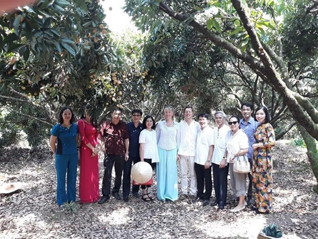 Swedish ambassador highly values quality of Thanh Ha litchi hinh anh 1
