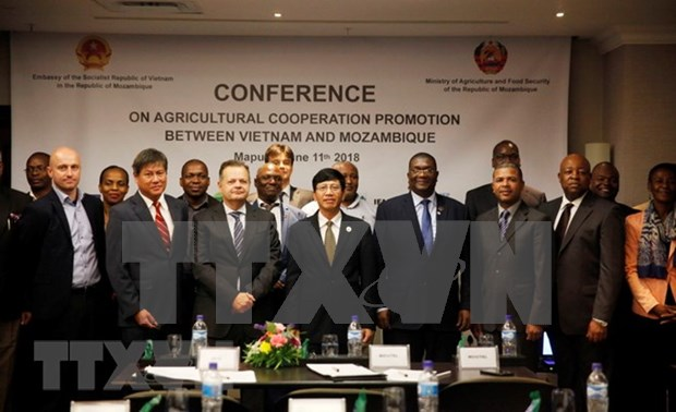 Vietnam, Mozambique further foster agricultural cooperation hinh anh 1