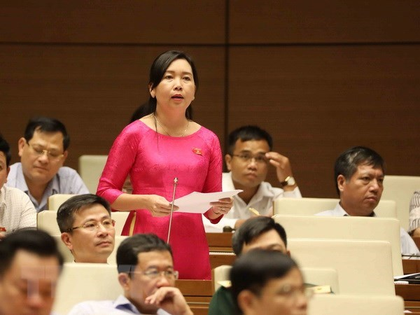 Expansion of anti-corruption to non-State sector scrutinised hinh anh 1