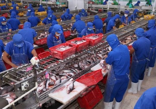 Seafood exports to China surge hinh anh 1