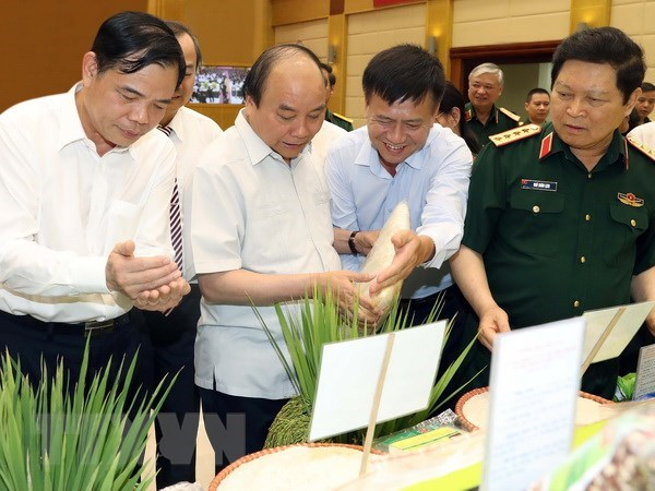 Project on agricultural modernisation proves effective: PM hinh anh 1