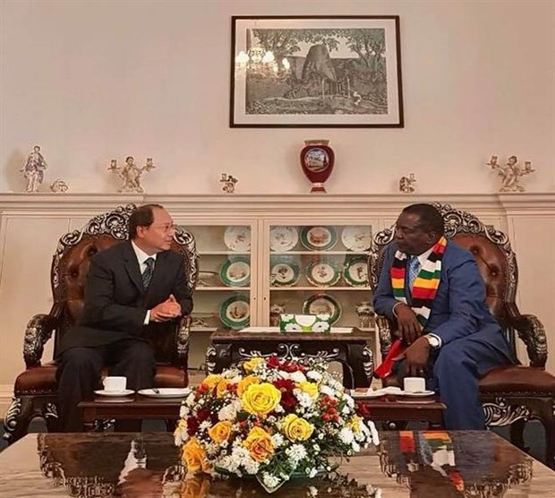 Zimbabwe, Vietnam should build on traditional ties: President hinh anh 1