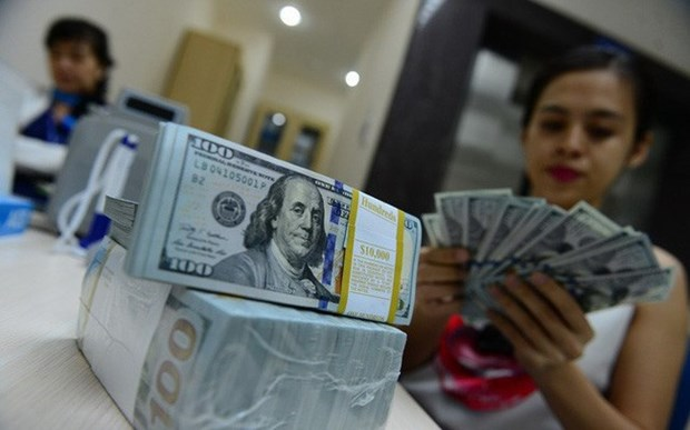Dollar hike won't significantly affect Vietnam's economy hinh anh 1