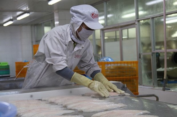 Middle East- potential market for Vietnamese seafood hinh anh 1