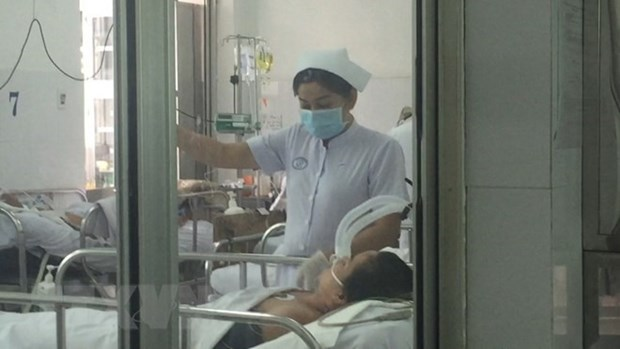 Swine flu causes another death in HCM City hinh anh 1