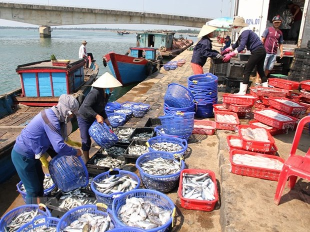 Agro-forestry-fishery posts highest GDP growth in decade hinh anh 1