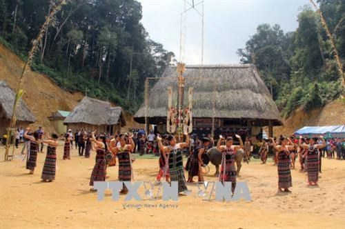 Quang Nam works to alleviate poverty rate among ethnic minorities hinh anh 1