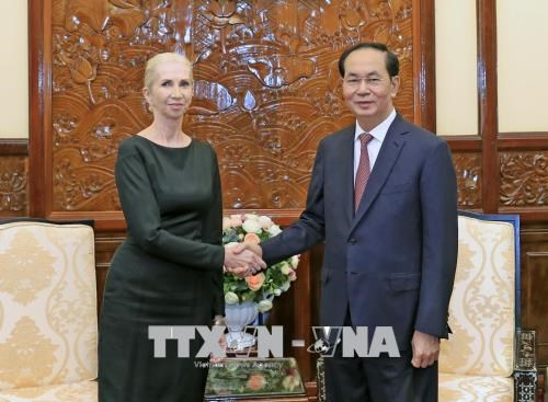 Vietnam treasures ties with Norway: President hinh anh 1
