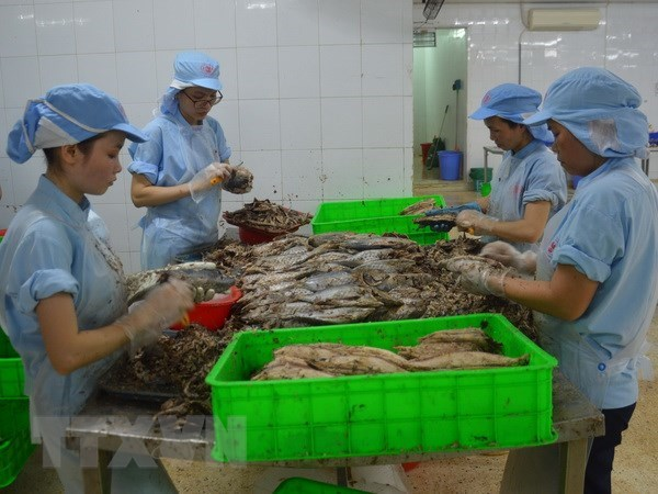 Aquatic product export estimated at 3.94 billion USD in first half hinh anh 1