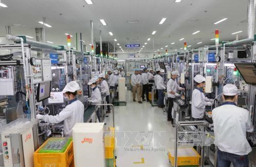 Deputy PM hails overseas Vietnamese businesses' efforts hinh anh 1