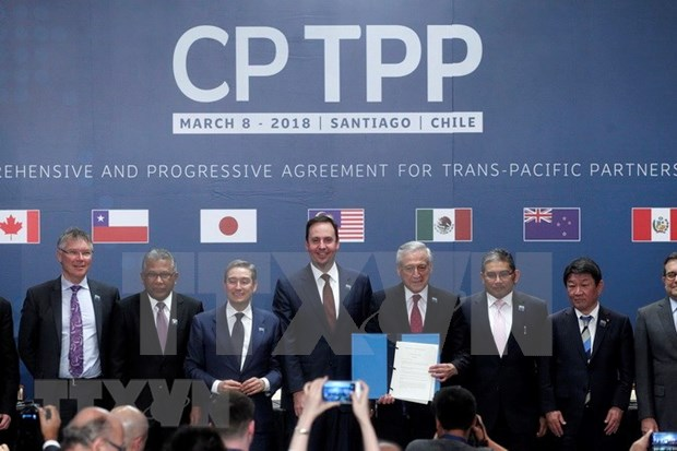 Japan parliament enacts bill to complete CPTPP procedures hinh anh 1