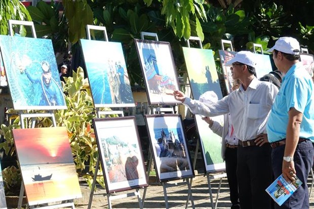 Quang Ngai: Exhibition on Ly Son's sea and islands opens hinh anh 1